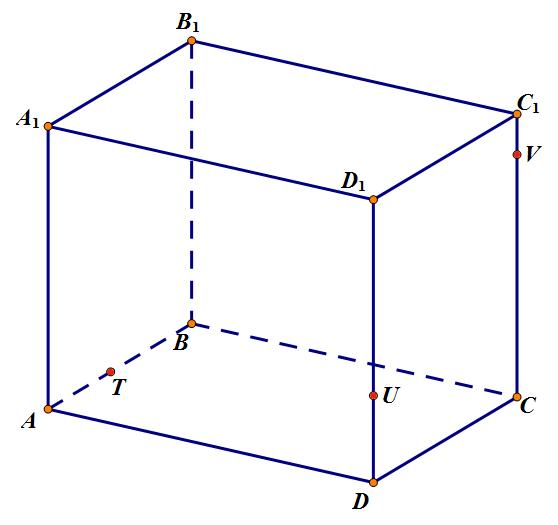 Задачи с2 на сечения с решениями бета акции решение задач